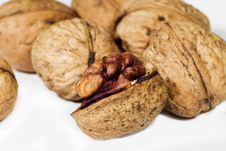 Free Walnut In Closeup Royalty Free Stock Images - 3794579