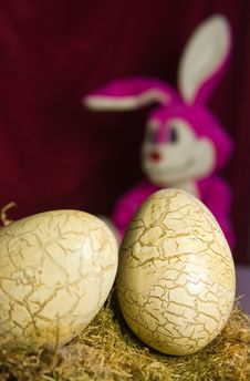 Free Easter Bunny Royalty Free Stock Photos - 3798208