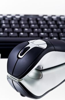 Computer Mouse. Royalty Free Stock Image