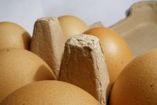 Free Egg Stock Photography - 382252