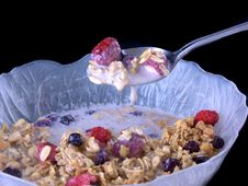 Free Bowl Of Cereal Stock Photography - 384972