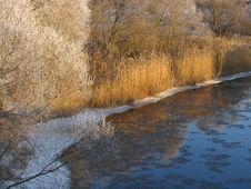 Free Frozen Landscape 3 Royalty Free Stock Image - 387546