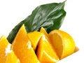 Free Oranges, Lemon, Leaf Royalty Free Stock Image - 3804006