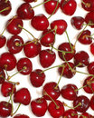 Free Cherries Background Royalty Free Stock Photography - 3809937