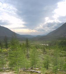 Free Taiga Landscape 02 Stock Photo - 3802150