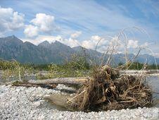 Free Taiga Landscape 01 Stock Image - 3802381