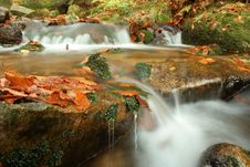 Free Autumn On Stream Royalty Free Stock Photography - 3804437