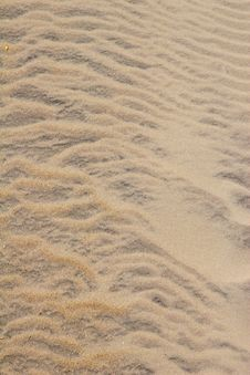 Free Sand At The Beach Stock Photo - 3806850