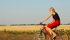 Free Woman Biking At Sunset Royalty Free Stock Image - 3809946