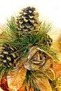 Free Christmas Cone Royalty Free Stock Photos - 3813468