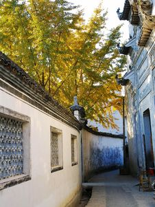 Free Yellow Leaves And Traditional Buildings Royalty Free Stock Photos - 3812718