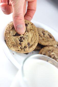 Free Picking Up Cookie Royalty Free Stock Photos - 3816508