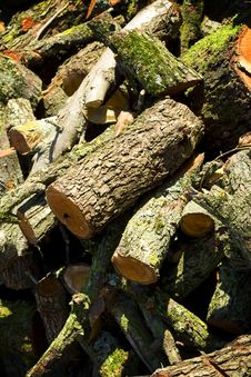 Free Firewood Pile Background Royalty Free Stock Photography - 3817417