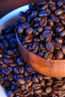 Free Close Up Backlit Coffee Beans On Plate Stock Image - 3819321