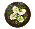 Free Eggs With Mayonnaise Stock Images - 3824294