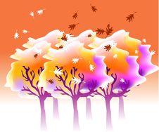 Free Autumn Stock Photo - 3821850