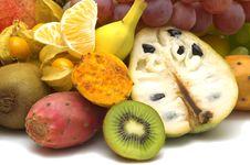 Free Fresh Exotic Fruits Stock Photography - 3823592