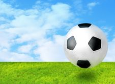 Free Football Ball On The Grass Royalty Free Stock Images - 3824669