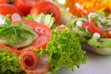 Fresh Salad With Onion Tomato And Basil Royalty Free Stock Image