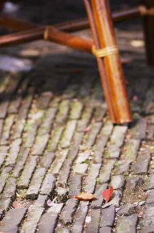 Free Fallen Leaves Around A Chair Stock Images - 3827574