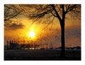 Free Sunset At Erie Lake Royalty Free Stock Image - 3836456