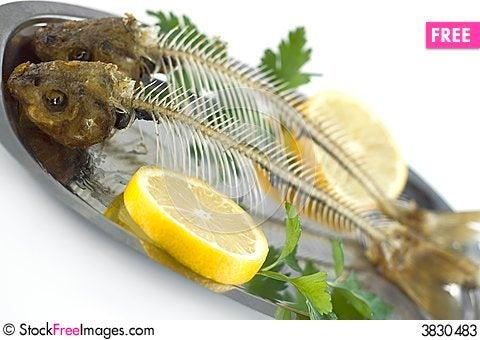 Fish Bones Free Stock Images Photos 3830483