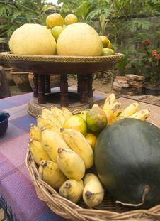 Free Tropical Fruit In A Garden Stock Photography - 3830162
