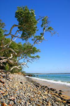 Free Sunshine Coast, Australia Stock Image - 3832081