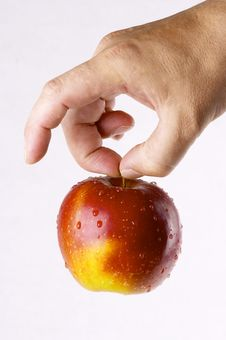 Free Red Apple Royalty Free Stock Photography - 3834307