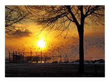 Sunset At Erie Lake Royalty Free Stock Image