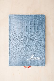 Free Light Blue Lizard Skin Note Book Royalty Free Stock Photo - 3837365
