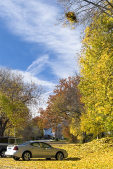 Free Autumn Colors Stock Photos - 3838623