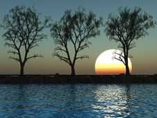 Free Tree Line Royalty Free Stock Image - 3839206