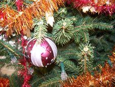 Free Christmas Stock Photo - 3839880