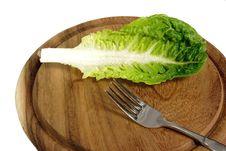 Free Leaf Of Salad Royalty Free Stock Photo - 3840315