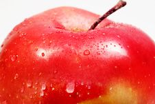 Free Apple Stock Photos - 3841703