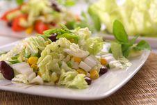 Free Fresh Vegetarian Salad Stock Images - 3842184