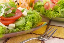 Free Fresh Salad With Onion, Tomato And Basil Royalty Free Stock Photography - 3842217