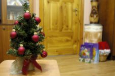Free Fir Tree In The Room Stock Photography - 3845022