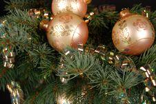 Free Seasonal Reflection Royalty Free Stock Photography - 3846987