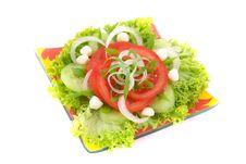 Free Fresh Salad With Onion Tomato And Basil Stock Photo - 3848160