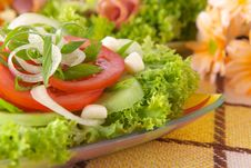 Free Fresh Salad With Onion Tomato And Basil Stock Images - 3848354