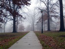 Free Foggy Morning Path Royalty Free Stock Photos - 3848528