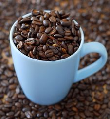Free Fresh Coffee Stock Photo - 3848890