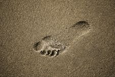 Free Foot Print Stock Images - 3849584