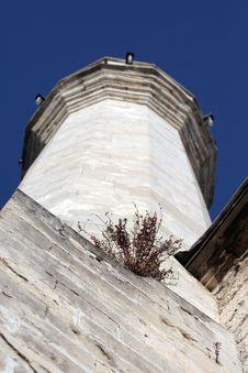 Flowers On Minaret Royalty Free Stock Image