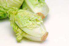 Free Salad Stock Image - 3858921