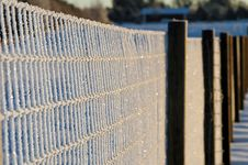 Free Frozen Fence Stock Photo - 3859070