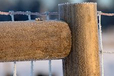 Free Detail Of Frozen Fence Post Royalty Free Stock Images - 3859119