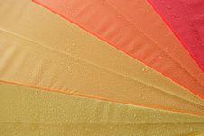 Free Umbrella Stock Photos - 3859163